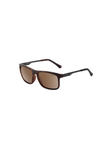 Dirty Dog Sunglasses Goat Satin Tortoise Brown Gunmetal Frame Brown Polarised Lens