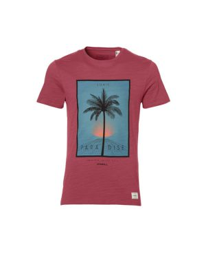 oneill 8a2310 3063 lifestyle t shirt holly berry mens