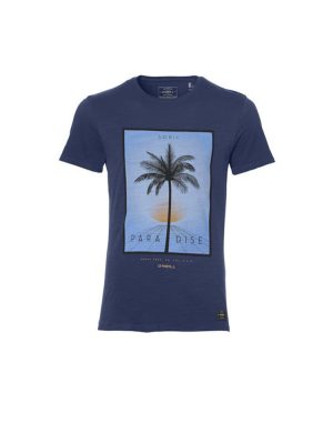 oneill 8a2310 5046 lifestyle t shirt atlantic blue mens