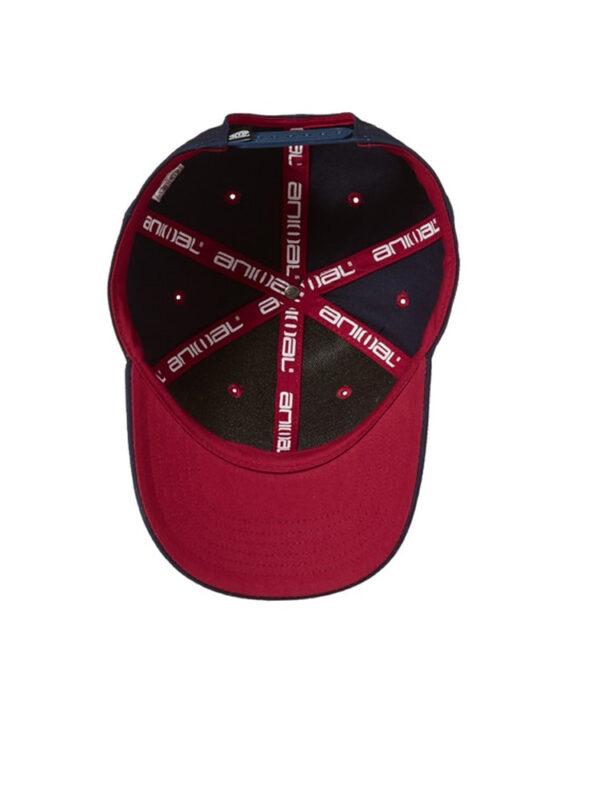 RAD-ANIMAL-CAP4
